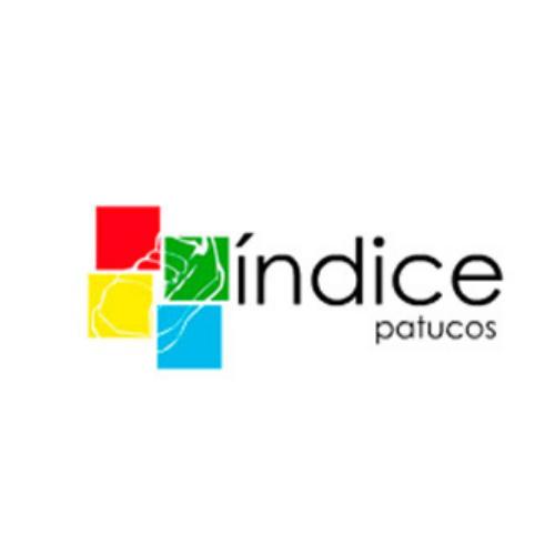 INDICE- PATUCOS DE PIEL